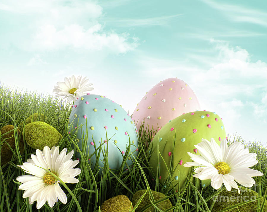 decorated-easter-eggs-in-the-grass-with-daisies-sandra-cunningham